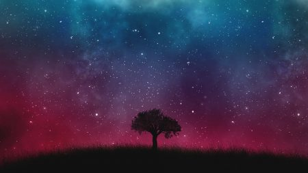 Kaufmann Quote, lone tree with the universe as background
