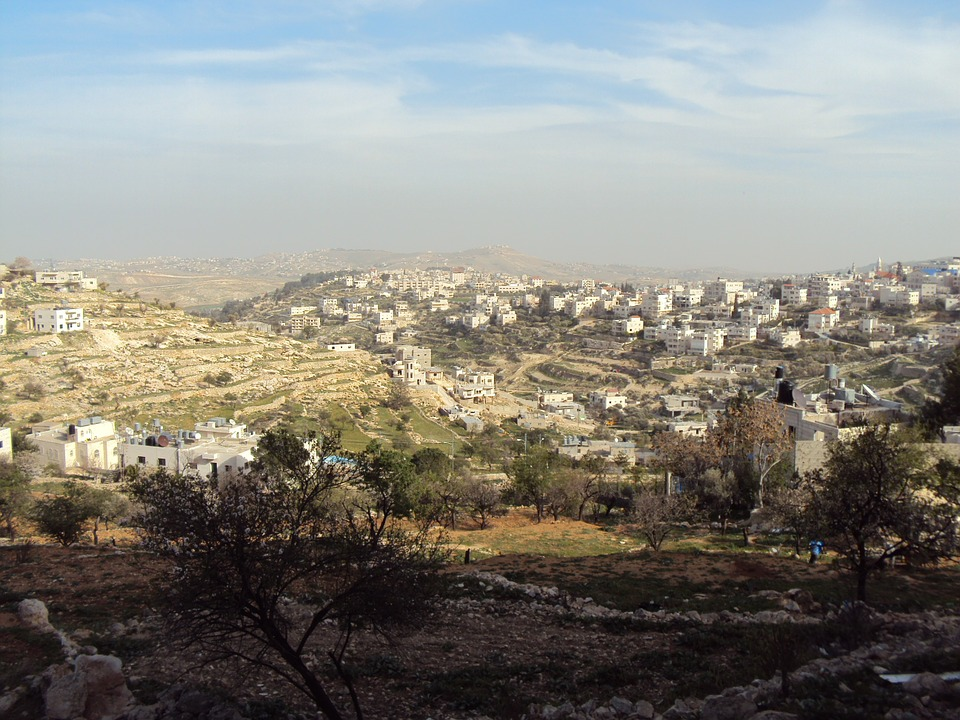 Sharon Quote, view over fields and houses in Palestine